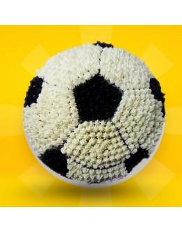 2D Cake - Football